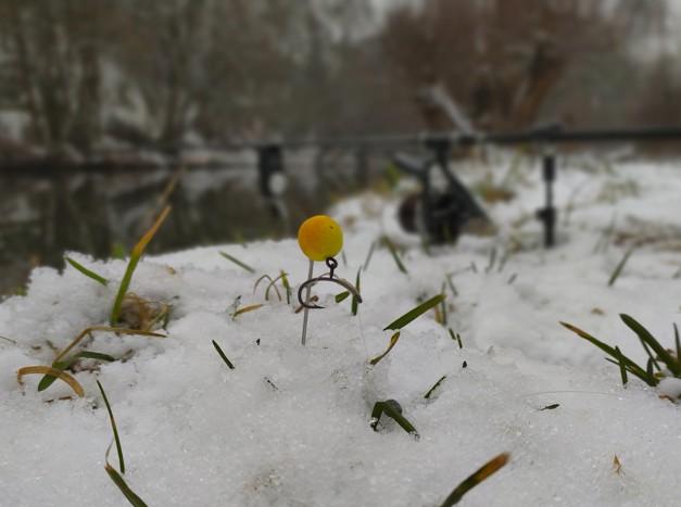 Lov kaprů v Zimě