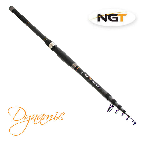 NGT Prut Dynamic Telescopic 3m